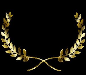 VEGETARIAN AWARD official website
